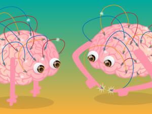 Brain Mechanics